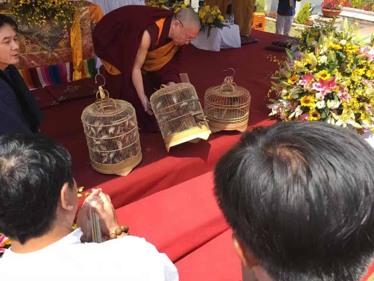 Gosok Rinpoche Vietnam 2017-03-05 884b1cfaa9655901776bab2c49b45e2