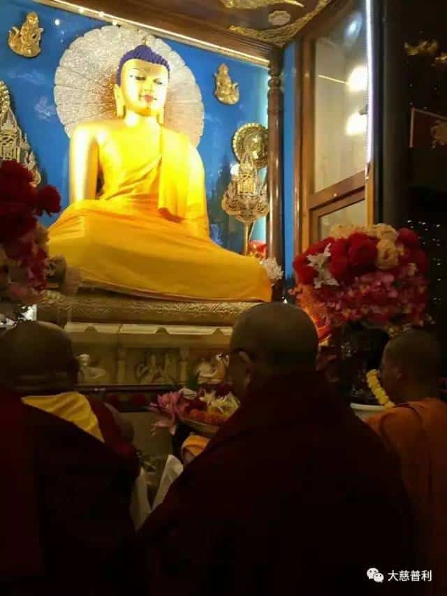 Gosok Rinpoche India 2017 06e8693efa1936b33f4cd0ce787aeab