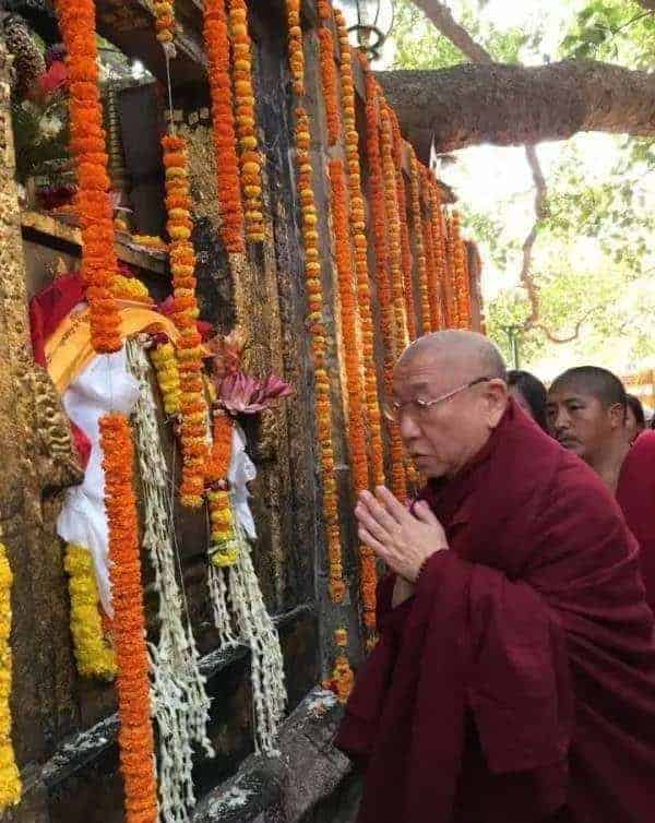 Gosok Rinpoche India 2017 7e5e4c678255fd36c773ed5273980bf