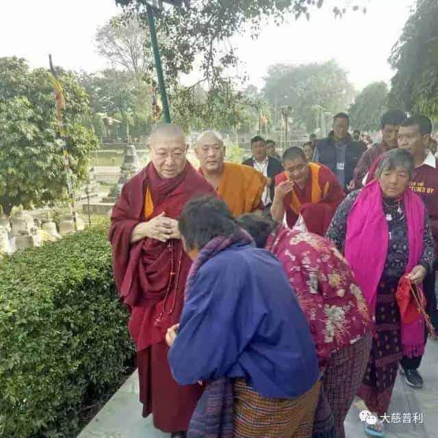 Gosok Rinpoche India 2017 f7c3831d975623a7673e5cda1a0f84f