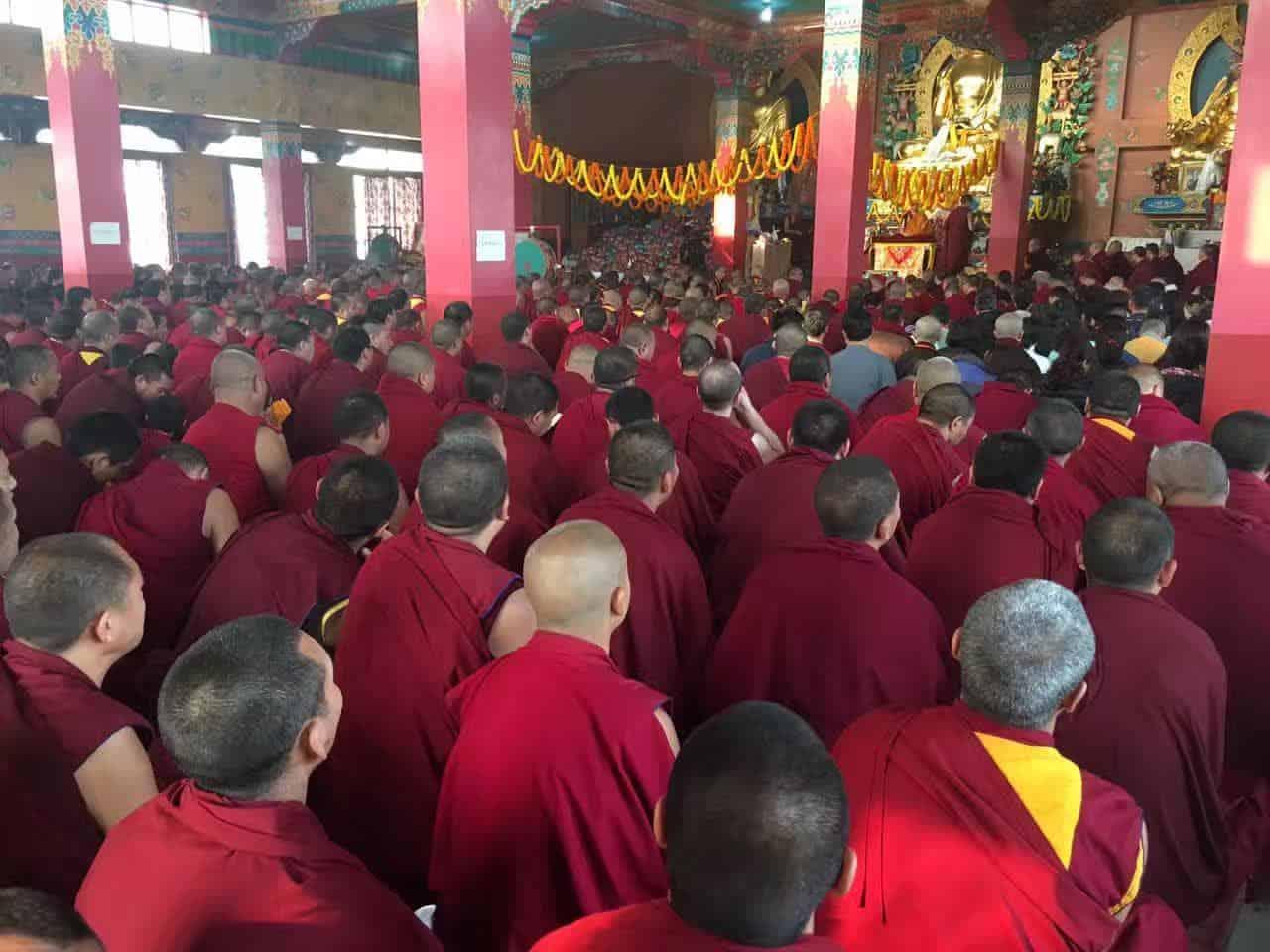 Gosok Rinpoche India 2017 longlife 0642b3f385ec3c12e7050ee2afeac16