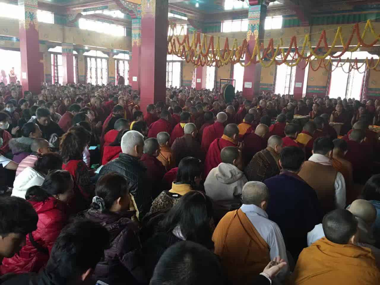 Gosok Rinpoche India 2017 longlife 0899d9ebed3bcec93d11971fab82331