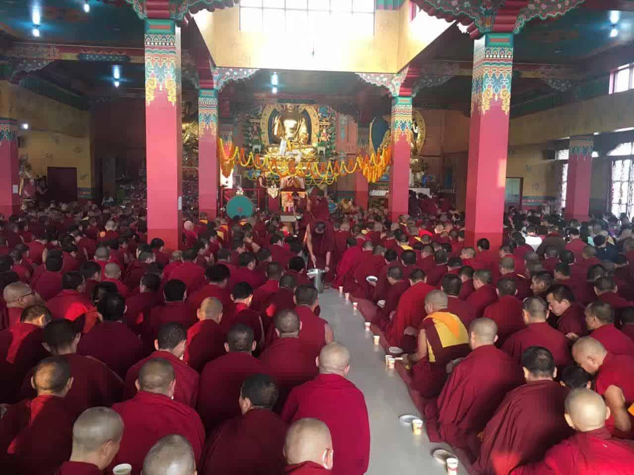 Gosok Rinpoche India 2017 longlife 15bc2a40a5d7baa052f47b05200b833