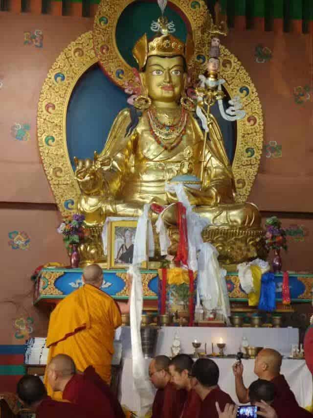 Gosok Rinpoche India 2017 longlife 4b35a37c96d74b44a0a0aaf9ed443cf