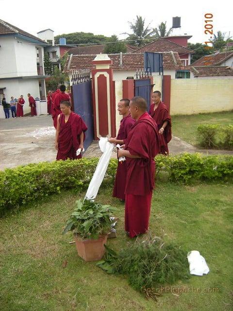 2010-11-11 Gosok Rinpoche in Gosok Ladang 45