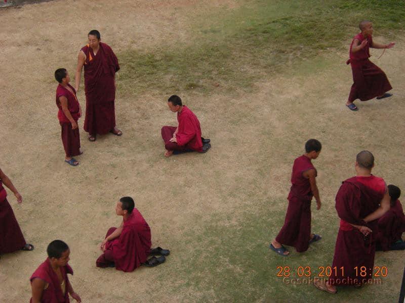 Gosok Ladang 2011-03-25 Practicing Debate 5575941159_5998123890_b