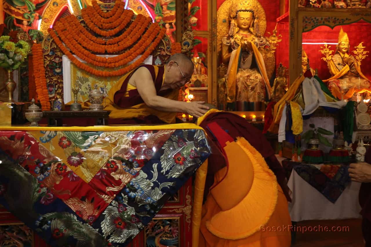 Gosok Rinpoche at Shelkar 2019 531_1