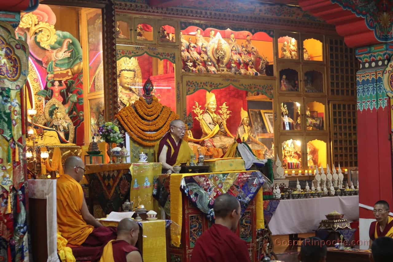 Gosok Rinpoche at Shelkar 2019 534_1