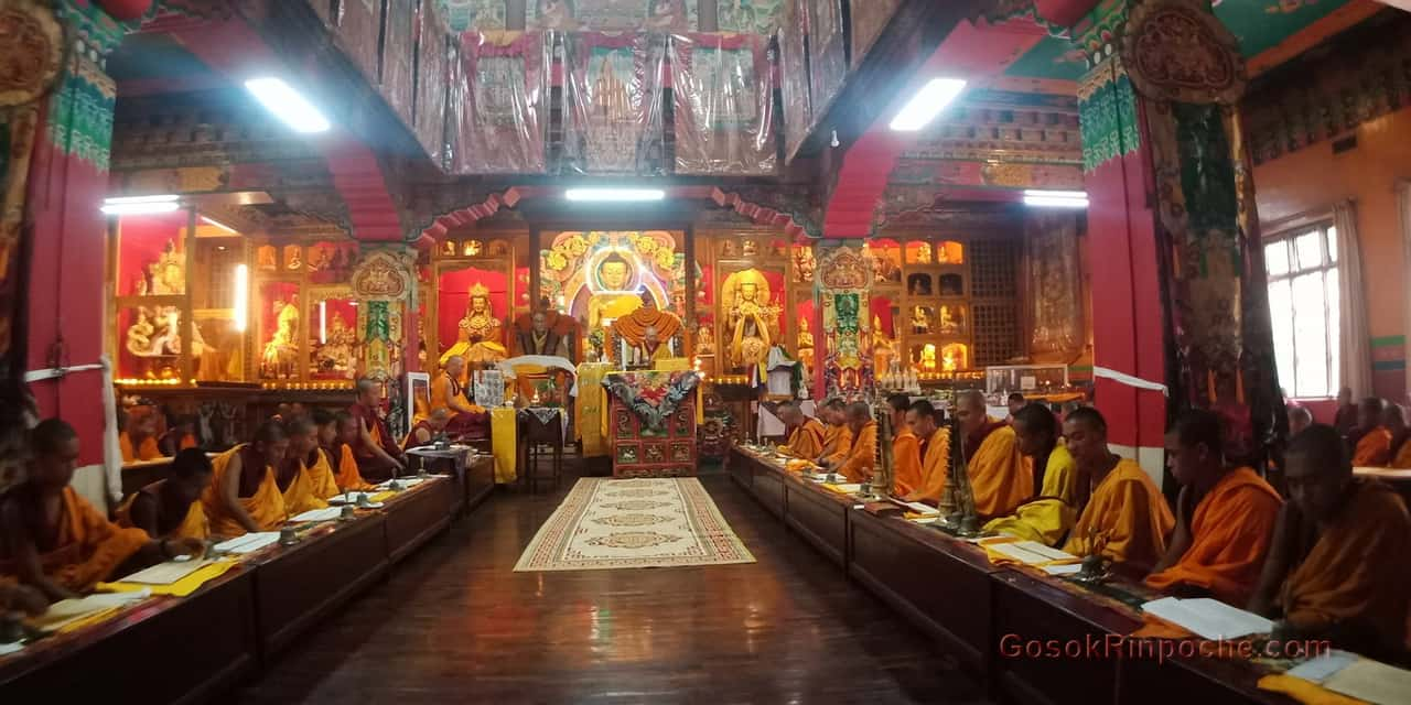 Gosok Rinpoche at Shelkar 2019 535_1