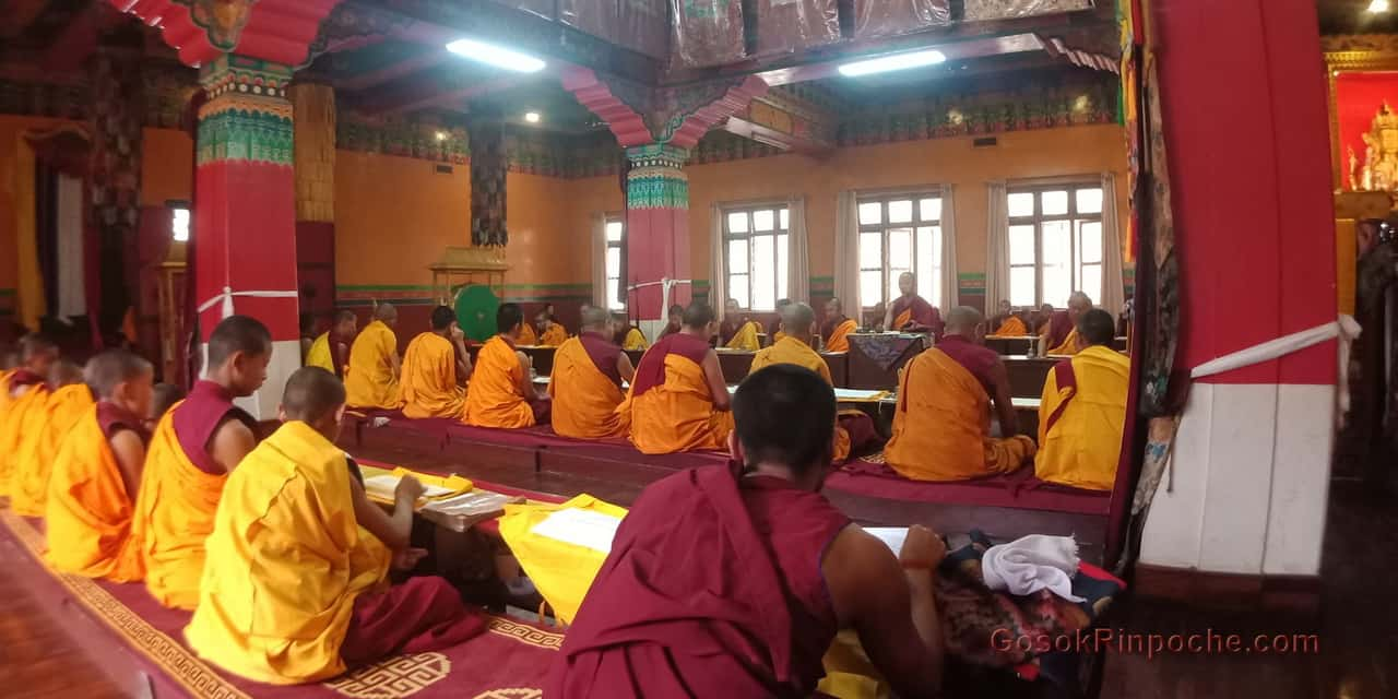Gosok Rinpoche at Shelkar 2019 536_1