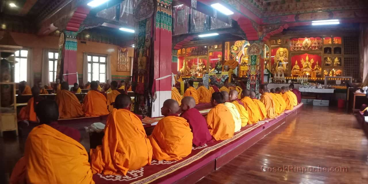 Gosok Rinpoche at Shelkar 2019 537_1