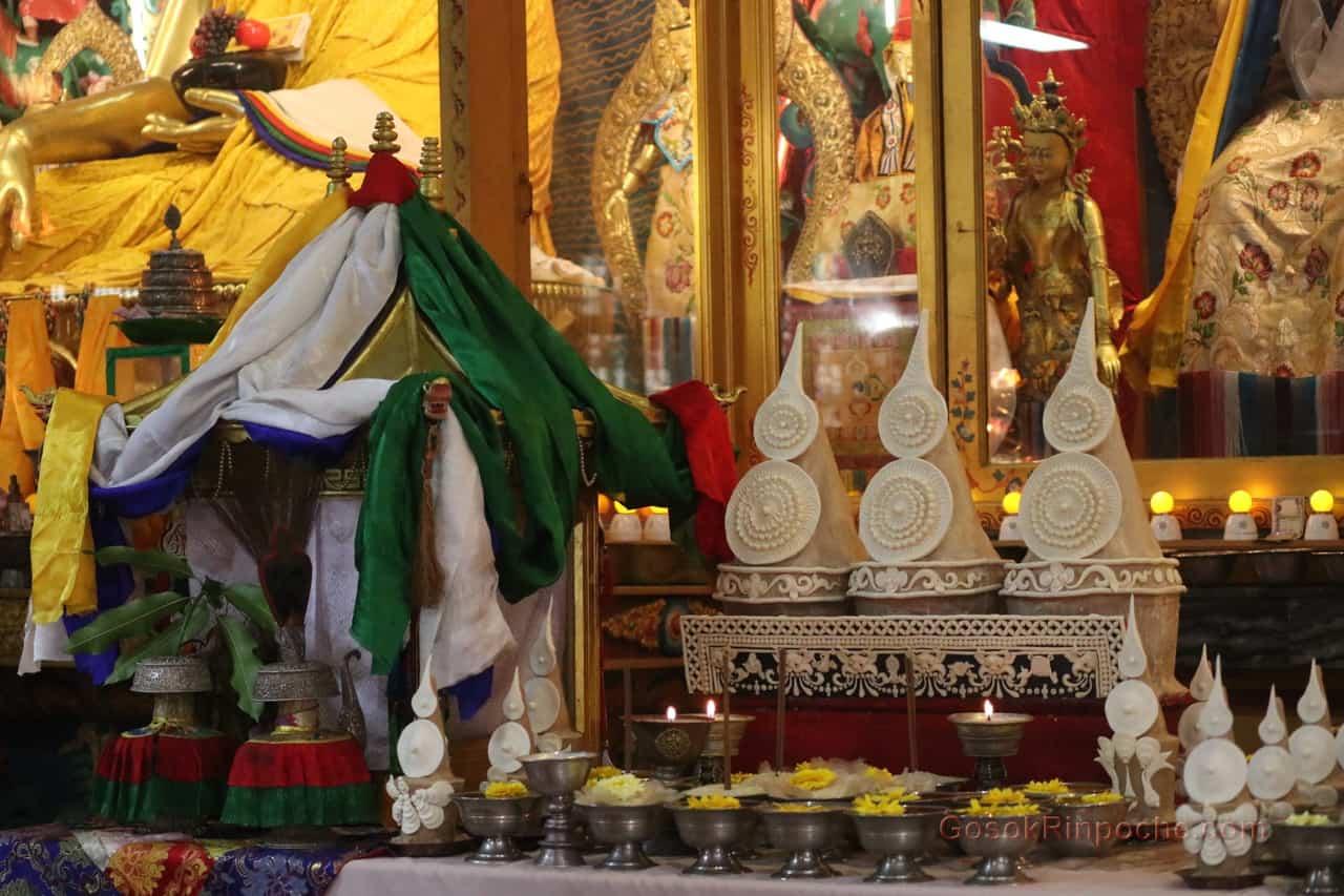 Gosok Rinpoche at Shelkar 2019 538_1